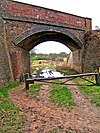 Severn Valley Railway Bridge by Devils Spittleful Nature Reserve - geograph.org.uk - 664790.jpg